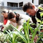 difference between cultivating community and building a church