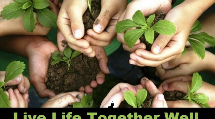live life together well