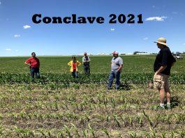 Conclave Dream